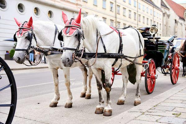 Horse-drawn carriage Stock photo © amok