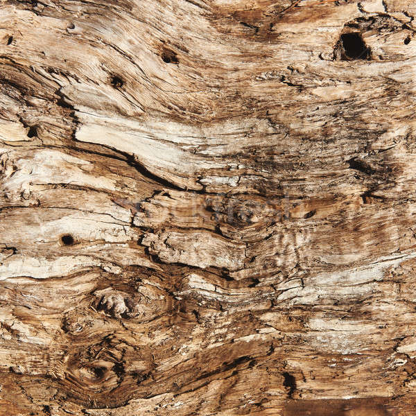 Close-up of an old wood texture Stock photo © amok