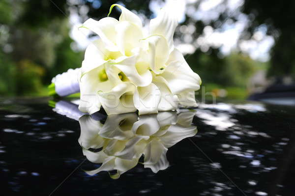Beautiful calla lilies bouquet Stock photo © amok