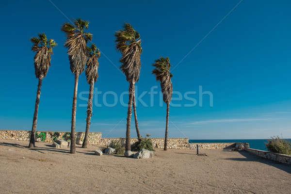 испанский город регион Испания природы песок Сток-фото © amok
