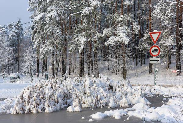 Drzew pokryty śniegu lasu lodu podpisania Zdjęcia stock © amok