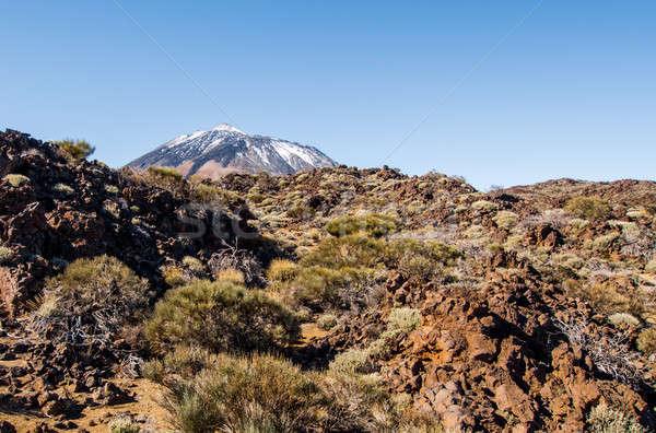 Scenic view of volcano Teide, Tenerife. Canary Islands Stock photo © amok