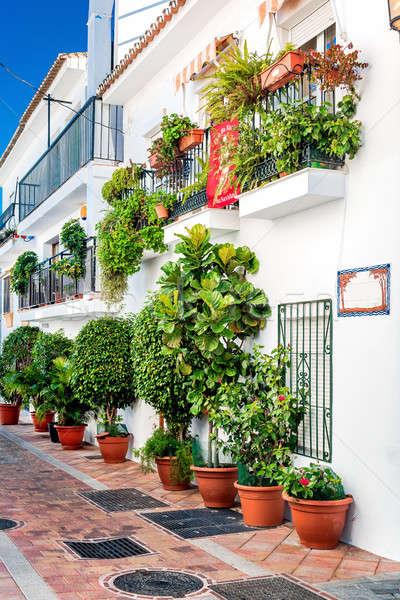 Picturesque street of Rancho Domingo Stock photo © amok