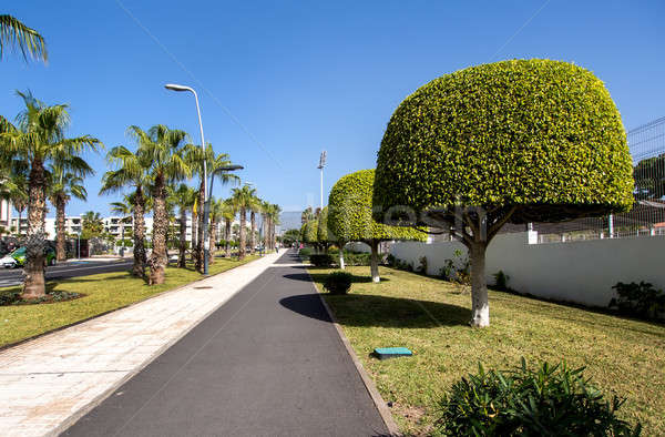 Las Americas street. Tenerife, Canary Islands. Spain Stock photo © amok