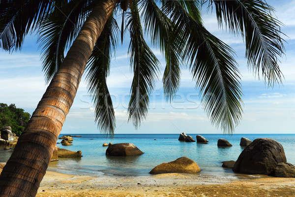 Tropical beach, Thailand Stock photo © amok