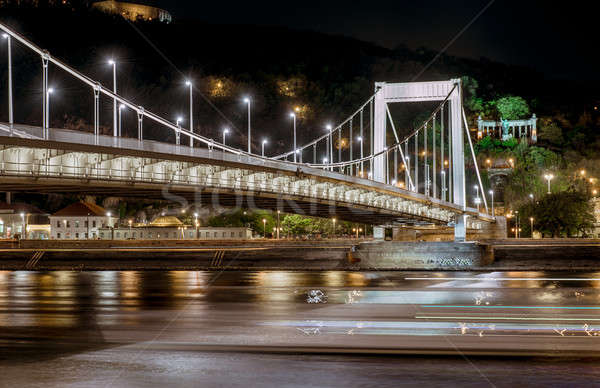 Night view of Elisabeth Bridge (Erzsebet hid).  Budapest, Hungary Stock photo © amok