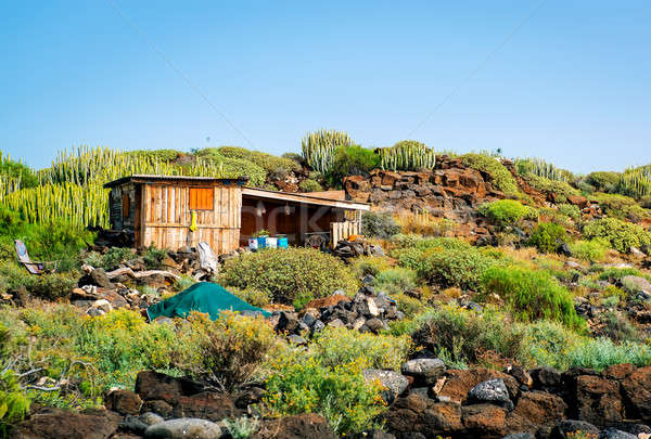 Self-made hovel in a tropics. Photo taken in Tenerife coast Stock photo © amok