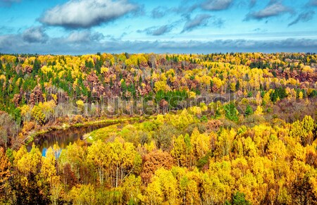 Picturesque panoramic view of autumn landscape in Sigulda. Latvia Stock photo © amok