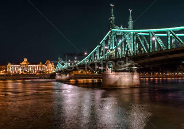 Liberdade ponte danúbio rio Budapeste Hungria Foto stock © amok