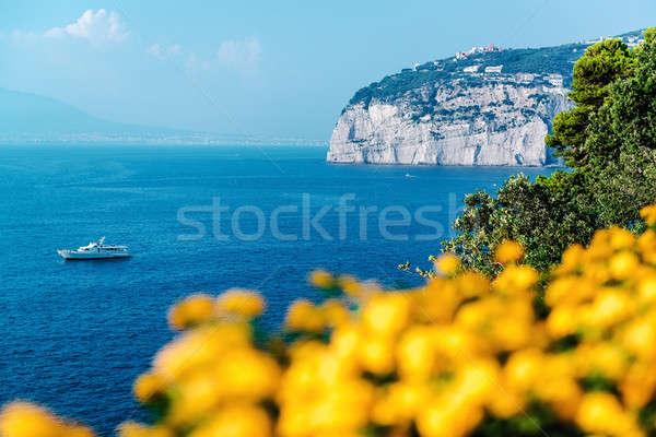 Pintoresco piano costa Italia sol naturaleza Foto stock © amok