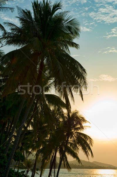 Stok fotoğraf: Ada · gün · batımı · güneş · doğa · manzara · deniz