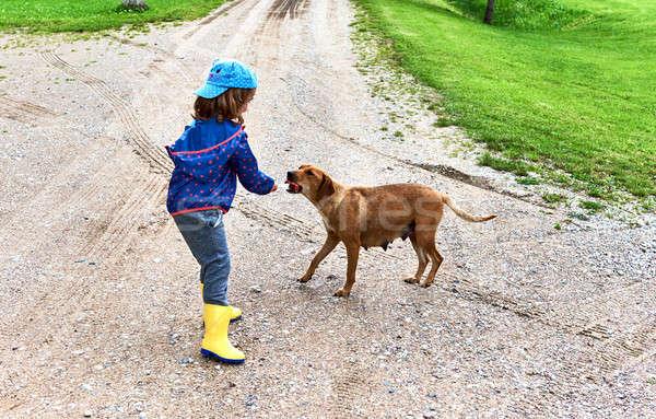 Kislány hajléktalan kutya lány gyermek eszik Stock fotó © amok