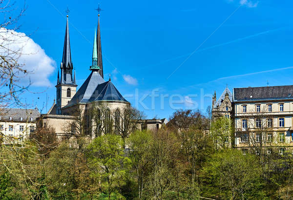 Notre Dame kathedraal dame Luxemburg stad westerse Stockfoto © amok