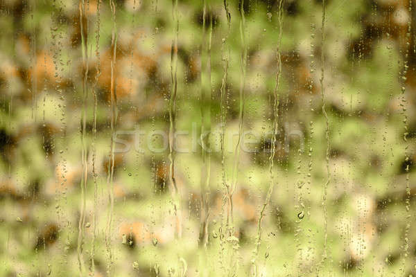 Water raindrops on a window glass Stock photo © amok