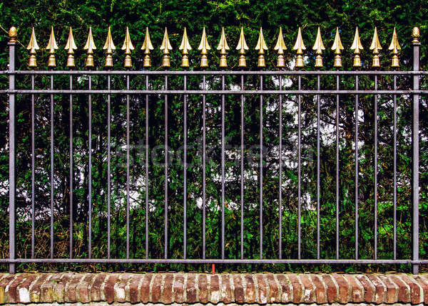 Decorative iron fence Stock photo © amok