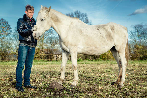 Man and horse outdoors Stock photo © amok