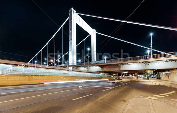 Night view of Elisabeth Bridge (Erzsebet hid).  Budapest, Hungarary Stock photo © amok