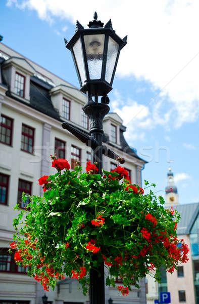 öreg Riga nyáridő Lettország virág város Stock fotó © amok