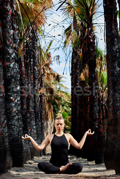 Young beautiful woman doing meditation in nature Stock photo © amok