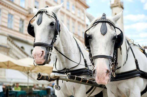 Stock fotó: Bécs · Ausztria · fuvar · vár · turisták · öreg