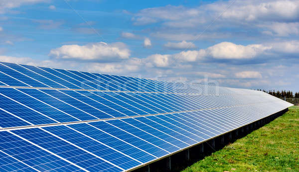 Solar panels on a green field Stock photo © amok