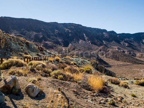 Desert landscape of Volcano Teide National Park. Stock photo © amok