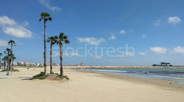 Beach of Torrevieja. Costa Blanca, Province of Alicante. Spain Stock photo © amok