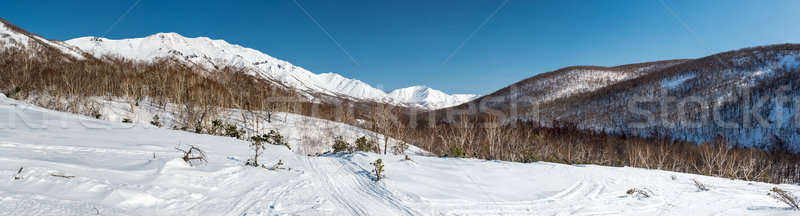 Panoramic view of a mountain pass, route over a ridge. Kamchatka Stock photo © amok