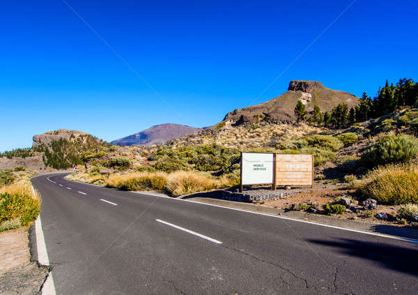Road to Volcano Teide at Tenerife, Canary Islands. Spain Stock photo © amok