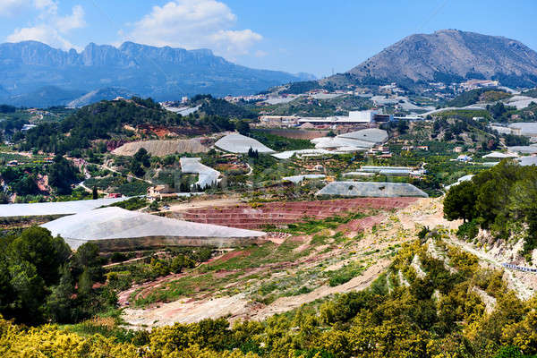 Valley with a mountains and hothouses in Spain Stock photo © amok