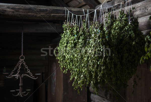 Betulla ginestra vapore stanza muro Foto d'archivio © amok