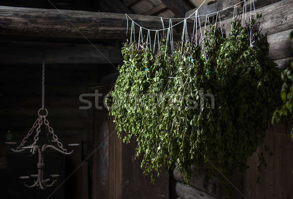 береза метлой внутри пар комнату стены Сток-фото © amok