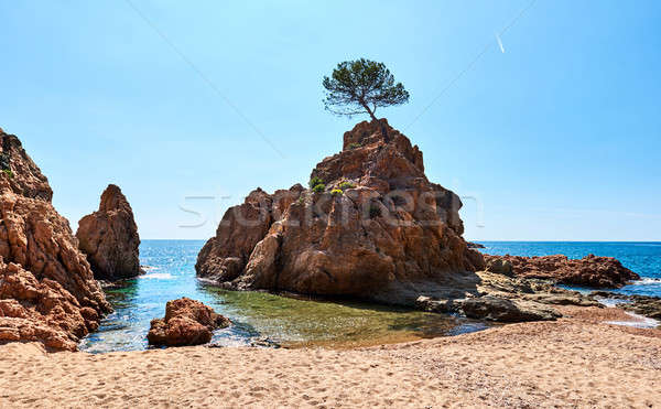 Rocky seaside of Mar Menuda Beach in Tossa de Mar Stock photo © amok