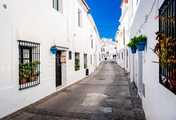 Picturesque street of Mijas Stock photo © amok
