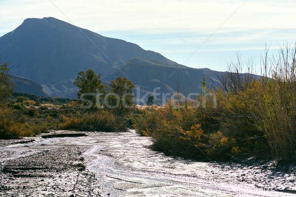 Tabernas Desert in Spain Stock photo © amok