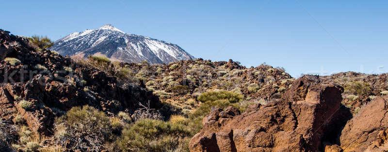 Panorâmico ver vulcão tenerife canárias céu Foto stock © amok