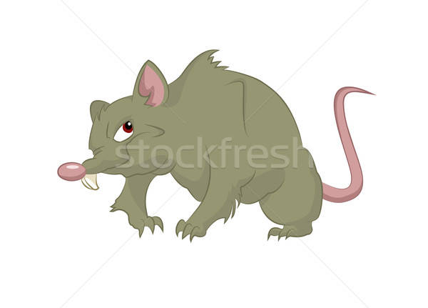 Big rat Stock photo © Amplion
