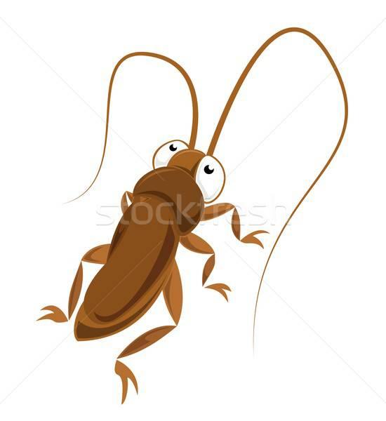 Cucaracha cuerpo pelo arte rojo animales Foto stock © Amplion