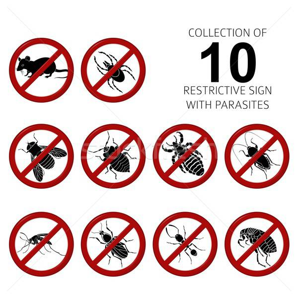 Collection of 10 parasites Stock photo © Amplion