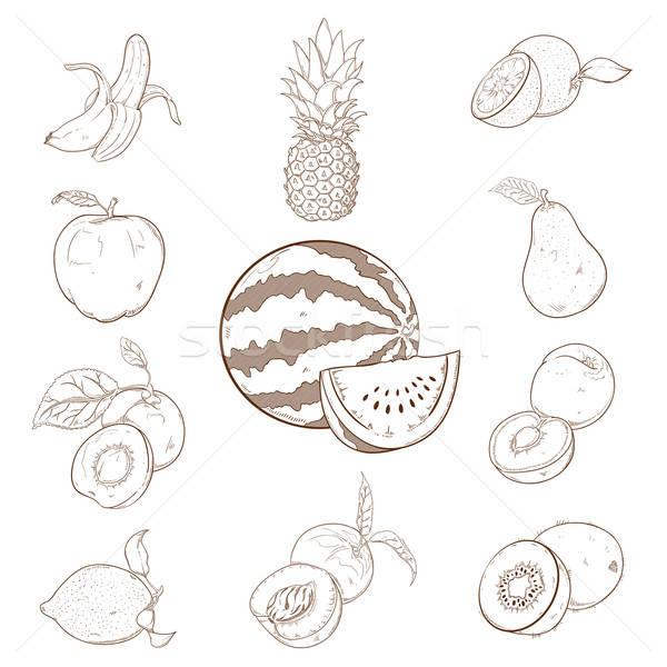 Toplama Gıda Boyama Meyve Limon Sebze Vektör