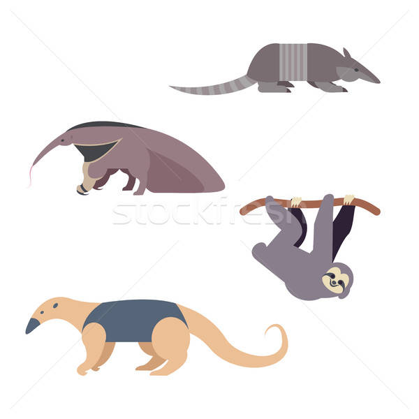 South America Animals Stock photo © Amplion