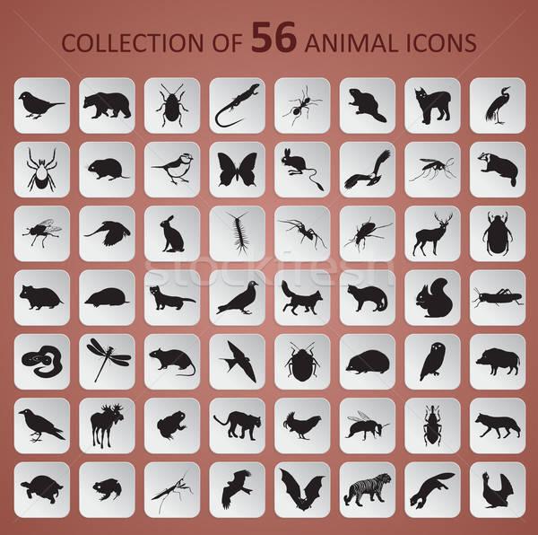 動物 アイコン ベクトル 画像 紙 黒 ストックフォト © Amplion