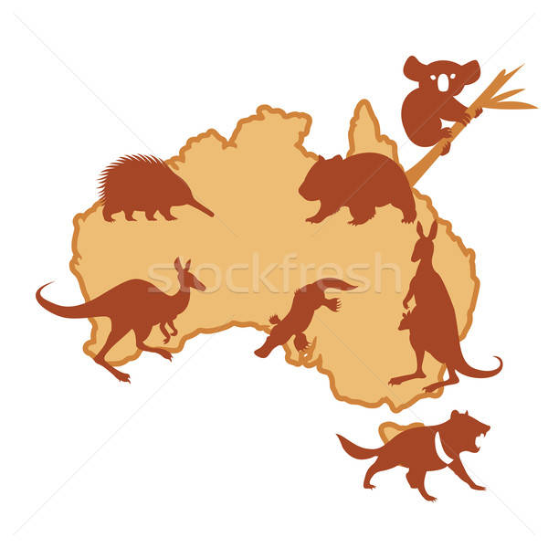 Australis with animals Stock photo © Amplion