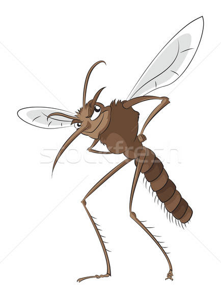 Bad mosquito Stock photo © Amplion