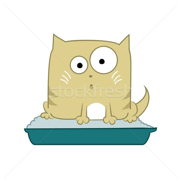 Cat in toilet Stock photo © Amplion