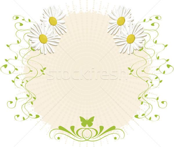 Madeliefjes papier daisy decoraties Stockfoto © anaklea