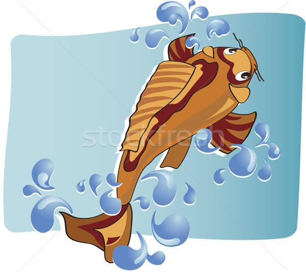 Karper zwemmen bubbels water rond Stockfoto © anaklea