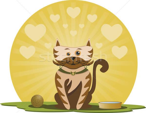 Kitten bal gelukkig pot water Stockfoto © anaklea