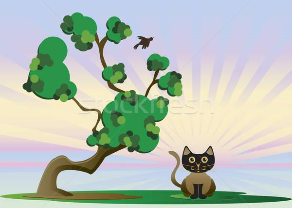 Kitten boom koud dag kat Stockfoto © anaklea