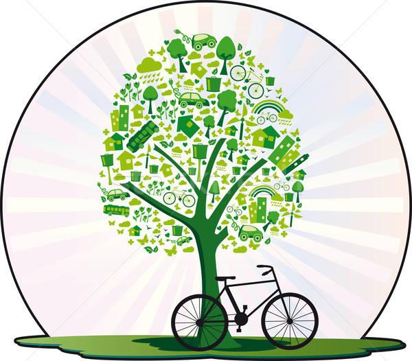 Ecologico albero parecchi elementi vita ecologico Foto d'archivio © anaklea